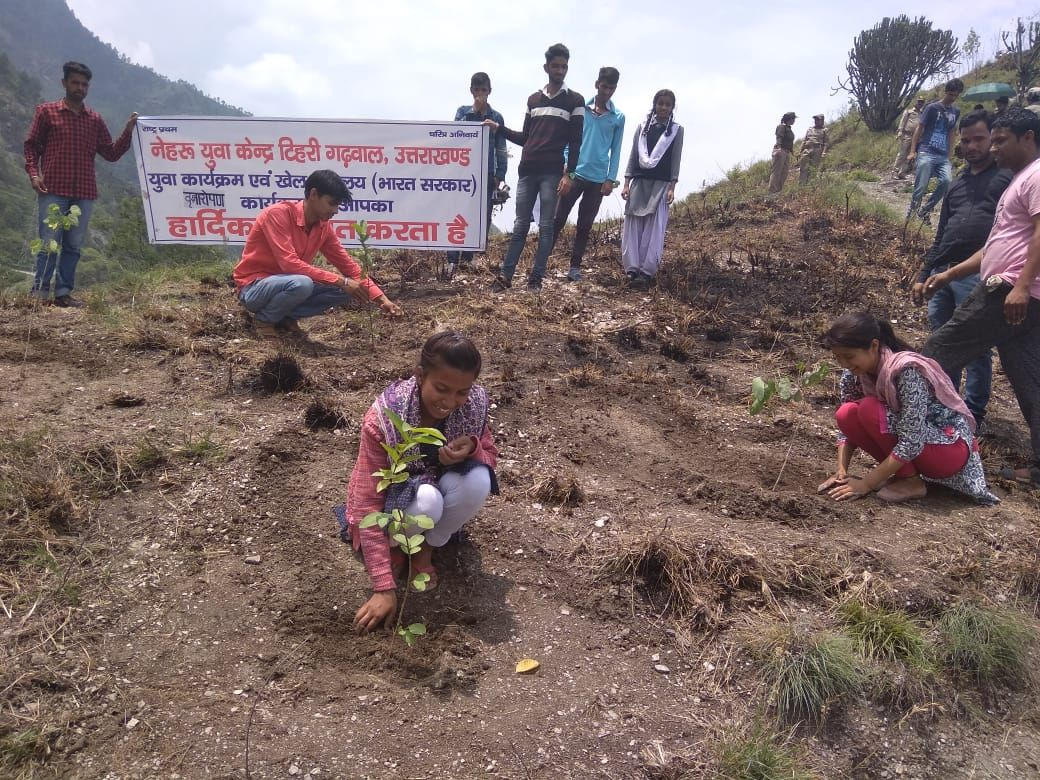Plantation drive by volunteers of NYKS