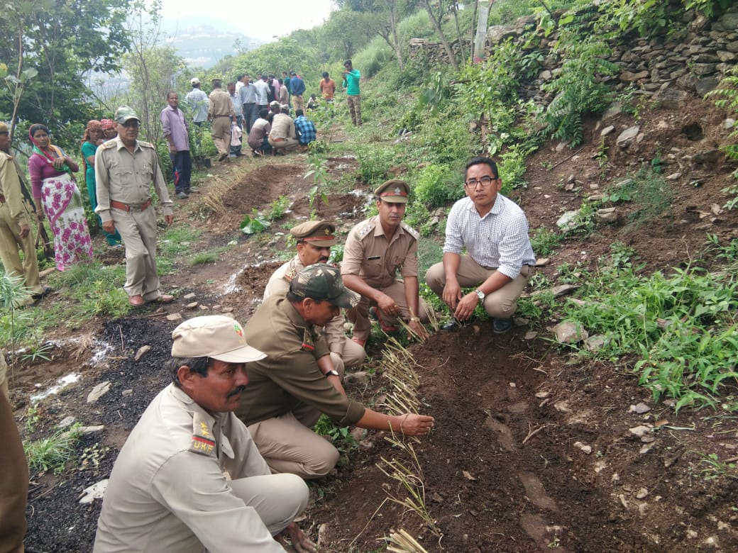 Plantation drive by State Forest Division