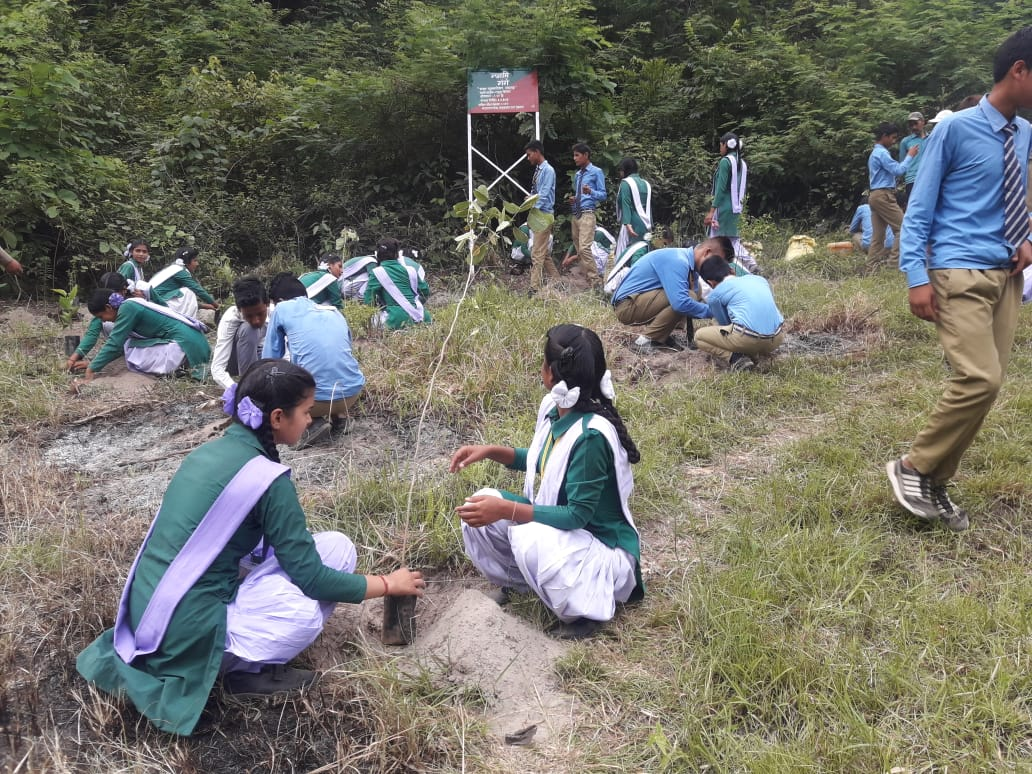 Plantation drive by school children , Rudraprayag